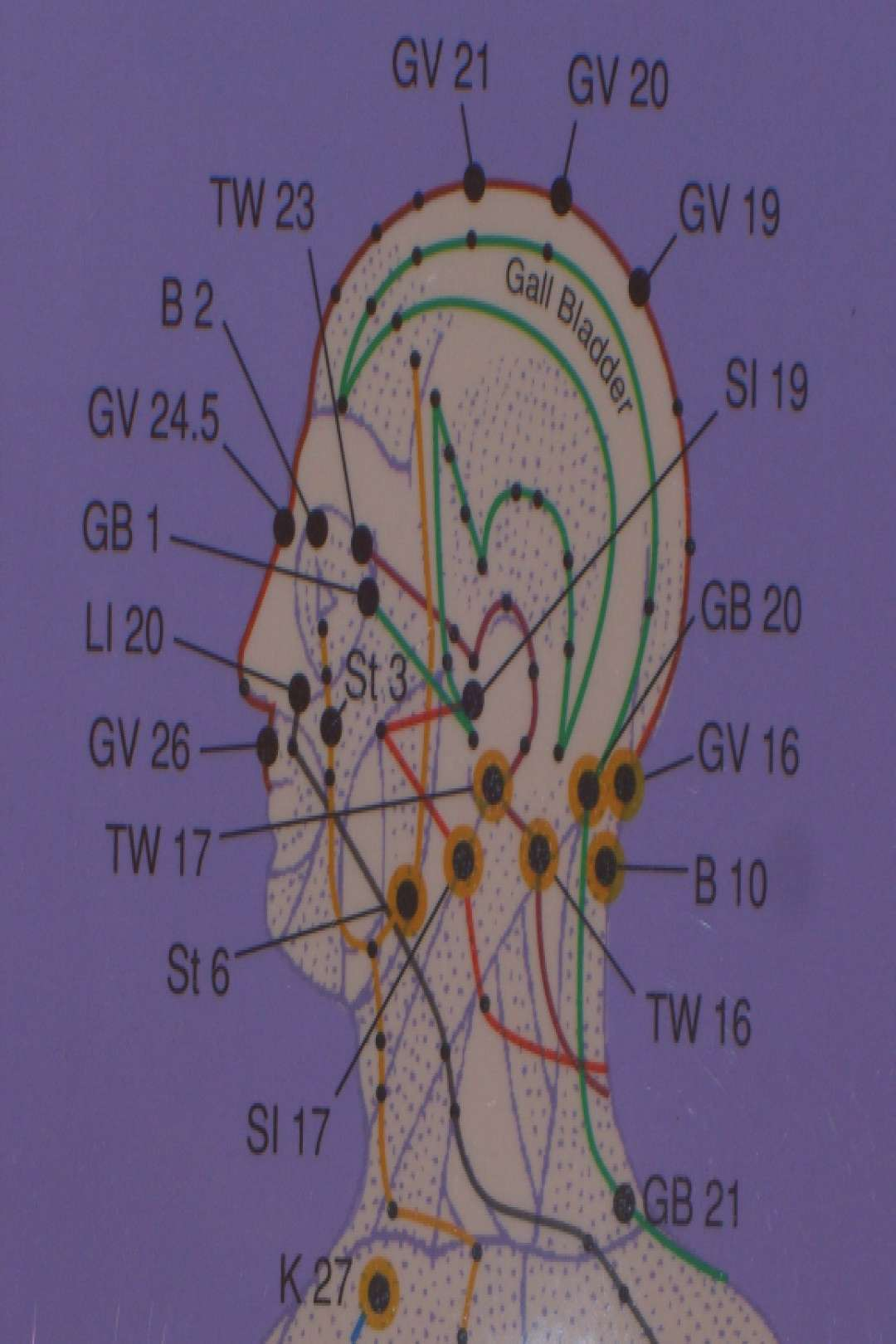 An Acupressure Chart is the road map for locating acupressure points for beginners and advanced pra